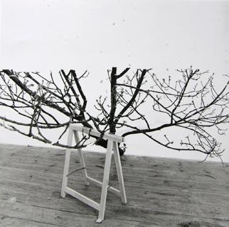 Astwerk, 1993