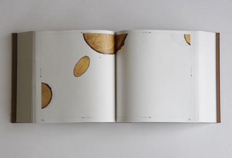 Baumstelle, Künstlerbuch