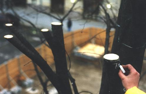 Baumstelle, 1998