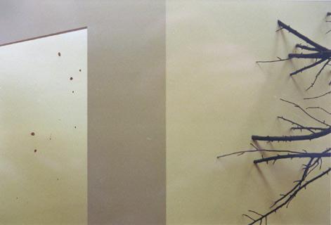 Die Lichtung, 1994